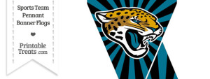 Jacksonville Jaguars Mini Pennant Banner Flags
