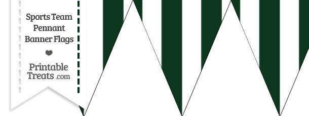 Jets Colors Pennant Banner Flag