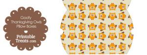 Large Goofy Thanksgiving Owls Pillow Box