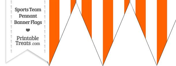 Marlins Colors Pennant Banner Flag