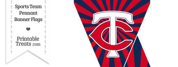 Minnesota Twins Mini Pennant Banner Flags
