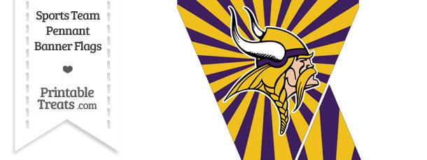 Minnesota Vikings Mini Pennant Banner Flags