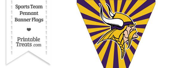 Minnesota Vikings Pennant Banner Flag