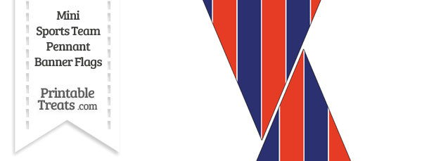 Nationals Colors Mini Pennant Banner Flags