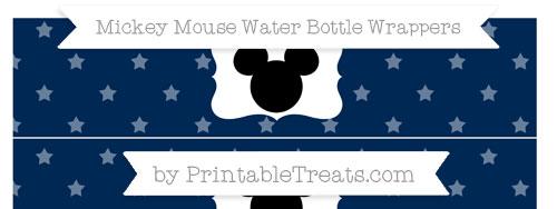 Free Navy Blue Star Pattern Mickey Mouse Water Bottle ...