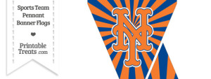 New York Mets Mini Pennant Banner Flags