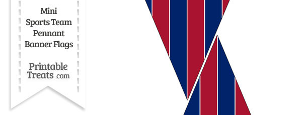 NY Giants Colors Mini Pennant Banner Flags