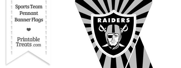 Oakland Raiders Mini Pennant Banner Flags