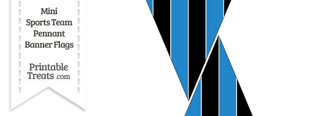 Panthers Colors Mini Pennant Banner Flags
