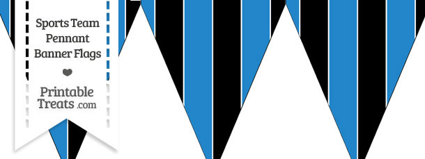 Panthers Colors Pennant Banner Flag