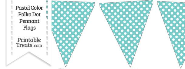 Pastel Blue Green Polka Dot Pennant Banner Flag