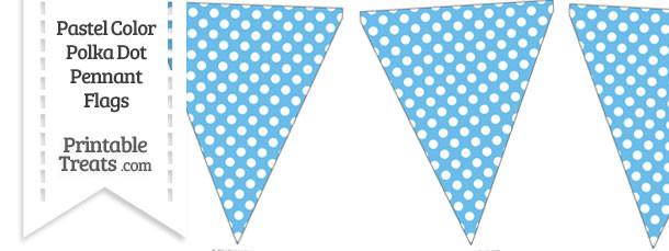 Pastel Blue Polka Dot Pennant Banner Flag