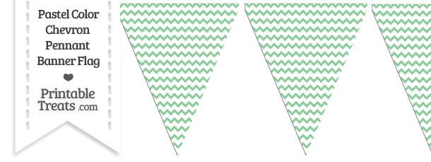 Pastel Green Chevron Pennant Banner Flag