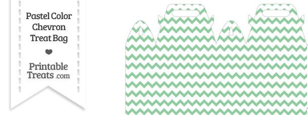 Pastel Green Chevron Treat Bag