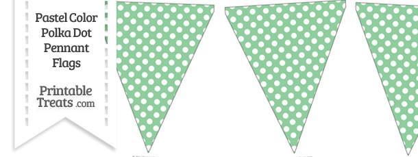 Pastel Green Polka Dot Pennant Banner Flag