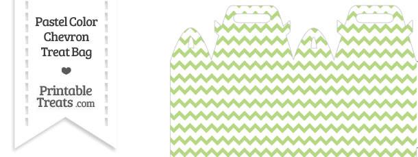 Pastel Light Green Chevron Treat Bag