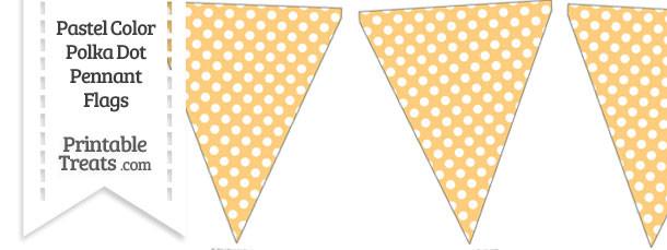 Pastel Light Orange Polka Dot Pennant Banner Flag