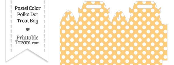 Pastel Light Orange Polka Dot Treat Bag
