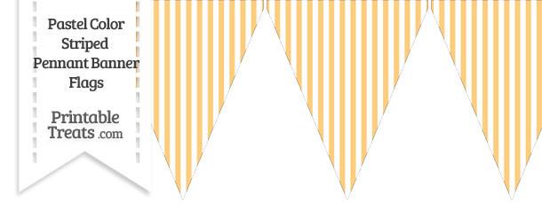Pastel Light Orange Striped Pennant Banner Flag