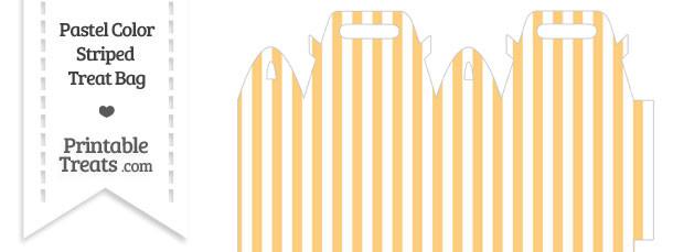 Pastel Light Orange Striped Treat Bag