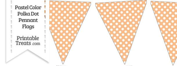 Pastel Orange Polka Dot Pennant Banner Flag