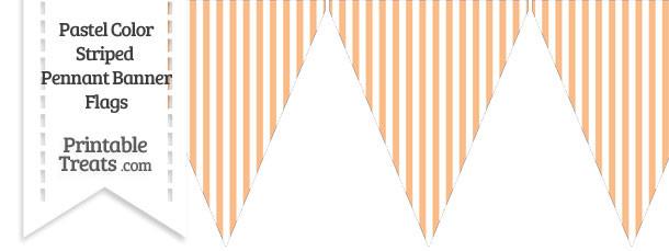 Pastel Orange Striped Pennant Banner Flag