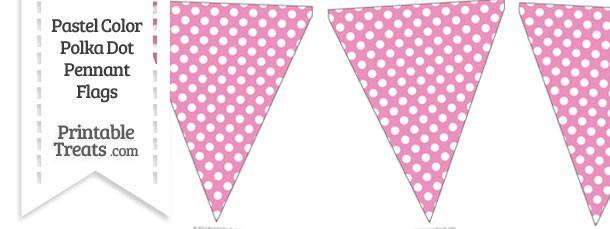 Pastel Pink Polka Dot Pennant Banner Flag