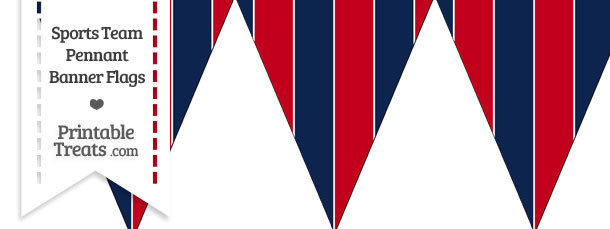 Patriots Colors Pennant Banner Flag
