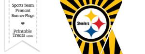 Pittsburgh Steelers Mini Pennant Banner Flags