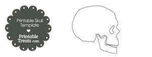 Printable Human Skull Template
