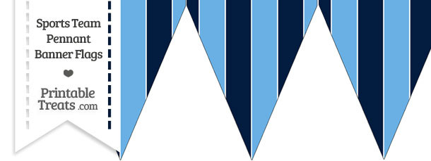 Rays Colors Pennant Banner Flag