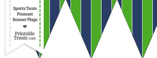 Seahawks Colors Pennant Banner Flag