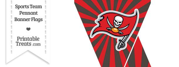 Tampa Bay Buccaneers Mini Pennant Banner Flags