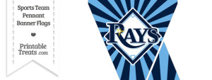Tampa Bay Rays Mini Pennant Banner Flags