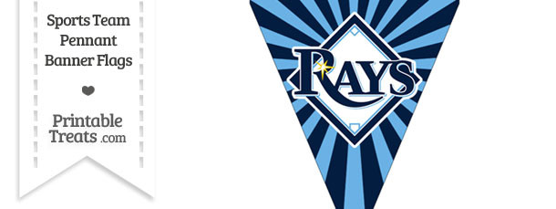 Tampa Bay Rays Pennant Banner Flag