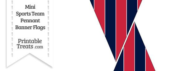 Texans Colors Mini Pennant Banner Flags