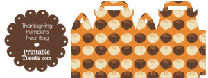 Thanksgiving Pumpkins Treat Bag