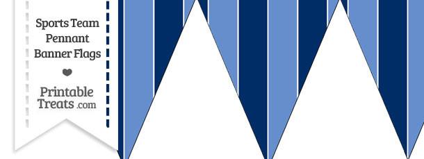 Titans Colors Pennant Banner Flag