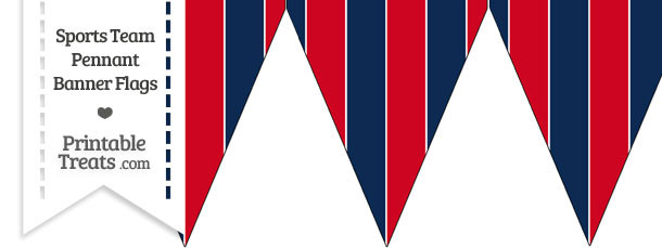 Twins Colors Pennant Banner Flag