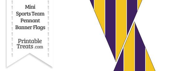 Vikings Colors Mini Pennant Banner Flags