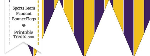 Vikings Colors Pennant Banner Flag