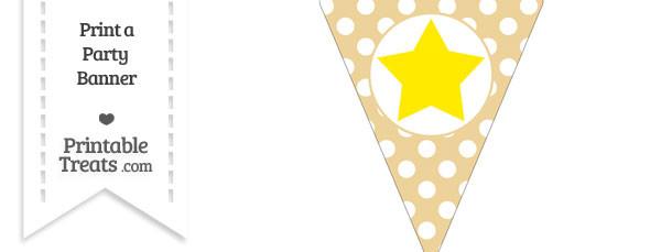 Pastel Bright Orange Polka Dot Pennant Flag with Star Download