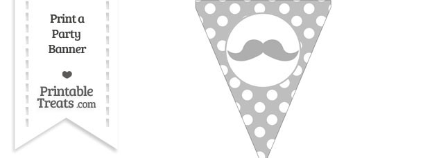 Pastel Light Grey Polka Dot Pennant Flag with English Mustache