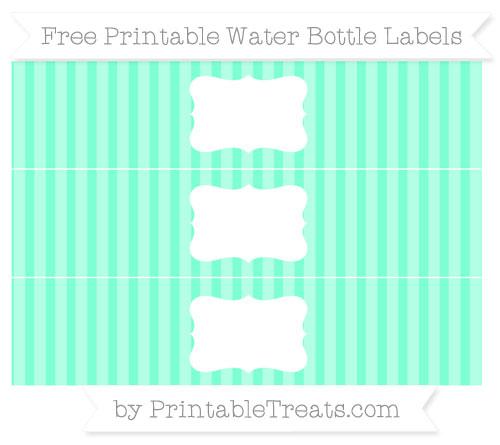 Free Aquamarine Striped Water Bottle Labels