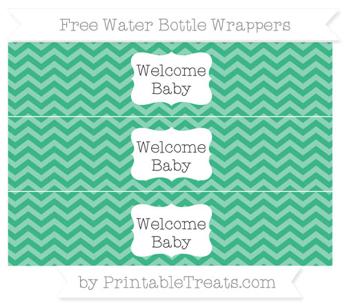 Free Mint Green Chevron Welcome Baby Water Bottle Wrappers