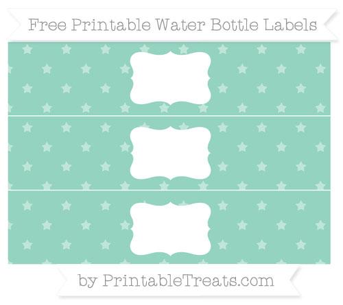 Free Pastel Green Star Pattern Water Bottle Labels