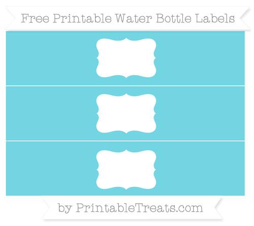 Free Pastel Teal Water Bottle Labels