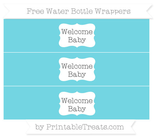 Free Pastel Teal Welcome Baby Water Bottle Wrappers
