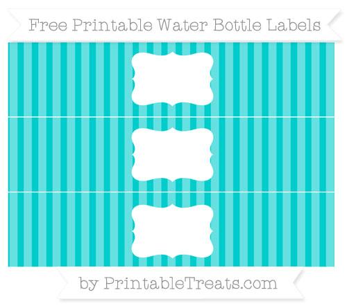 Free Robin Egg Blue Striped Water Bottle Labels