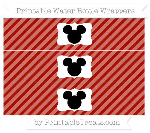 Free Turkey Red Diagonal Striped Mickey Mouse Water Bottle ...